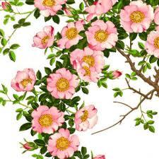 japanese cherry blosso ceramic windbell creative girls hanging birthday gifts in doors and windows