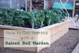 how to start a garden bed. Contemporary Garden How To Get Started With Raised Bed Gardening  Five Little Homesteaders Throughout To Start A Garden