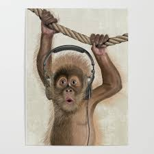 Baby Monkey Poster By Sparafuori