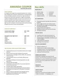 entry level web developer resume template sample resume with no job experience