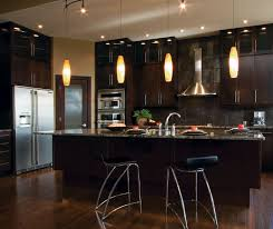 Small Picture Modern Kitchen Cabinets in Espresso Finish Kitchen Craft