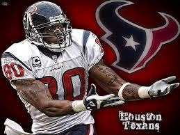 Andre Johnson Wallpaper Hd Normal Wife ...