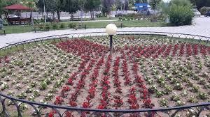 Да аз се грижа за цветната градина, а мъжът ми за овощната. Prevrnaha Svishov V Cvetna Gradina Trud