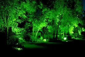 outdoor lighting trees garden party hire