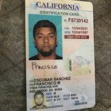 In Best Real License Fake Drivers 22 And 2019 Images