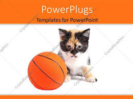 Basketball Powerpoint Template Powerpoint Template A Cat With A Basketball And White Background