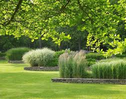 Small Picture 1625 best ornamental grass perennial meadows images on Pinterest