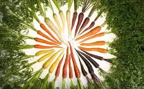 هویج ضد چروک پوست