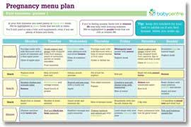 48 Clean Meal Chart For Pregnancy