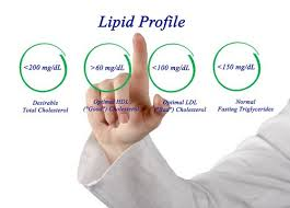 should go for a lipid profile test