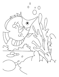 Small Picture Fish hunting her dish coloring pages Download Free Fish hunting