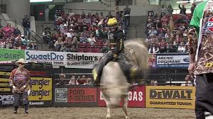 pro bull riding.  Pro Animated GIF Pbr Bull Riding Professional Riders Share Or Download  With Pro Bull Riding A