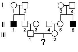 Risk Calculation In Pedigrees