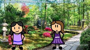 Schizophrenia     Nature