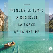 Prenons Le Temps Dobserver La Force De La Nature Cette Citation