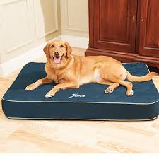 Drs Foster & Smith Quilted Super Deluxe Dog Bed
