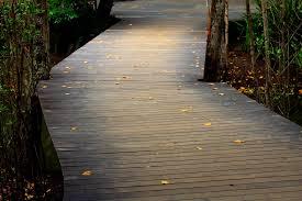 path grass wood bridge sunlight leaf sidewalk floor asphalt walkway autumn backyard passage flooring road surface
