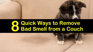 remove bad smell from a couch