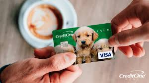 Overdraft protection typically allows transactions exceeding the balance in your checking account to be approved and can save you steep overdraft fees. Credit Cards Vs Debit Cards Credit One Bank