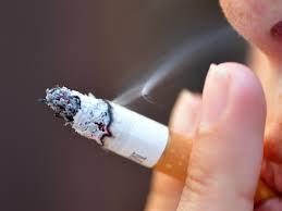 argument essay on smoking