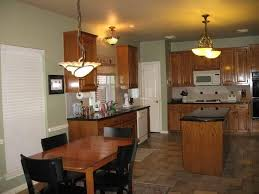What Color To Paint Kitchen With Dark Cabinets Custom Decorating Ideas