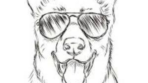 Animal Creative And Cool Drawings 2 Youtube