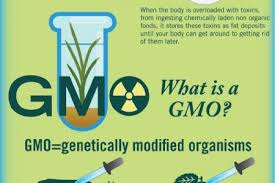 organic vs gmo foods ly organic food and weight loss infographic