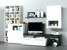Bedroom Wall Units For Storage Impressive Wall Storage Units Wall Storage Unit Wall Storage Units For Small