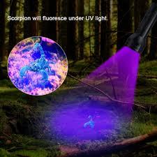395 Nm Uv Light Uv Flashlight Black Light 51 Led 395 Nm Ultraviolet Torch Blacklight Detector For Dog Urine Pet Stains And Bed Bug