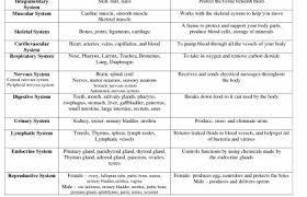 Body System Chart Barca Fontanacountryinn Com