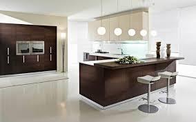 CONTEMPORARY KITCHEN DESIGN PEDINI SAN DIEGO contemporary-kitchen