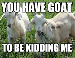 You Have Goat To Be Kidding Me Zouickuemecom Totes Me Goats