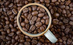 coffee beans cup. Simple Beans Coffee Beans In A Cup Inside Coffee Beans Cup