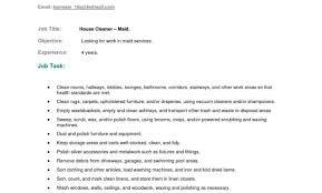 Housekeeping Resume Housekeeper Resume Executive Job Description Sample No Experience 16