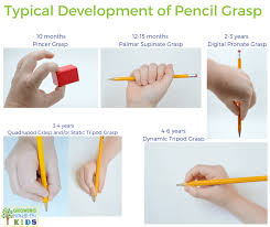Grasp Patterns Delectable Typical Pencil Grasp Development For Kids