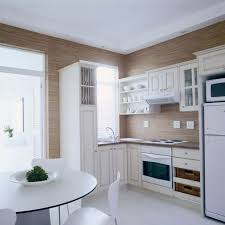 Small Picture Amazing Apartment Kitchens Designs with Small Kitchen Design