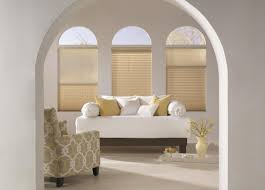 Budget Blinds Arched Windows Pleated Shades
