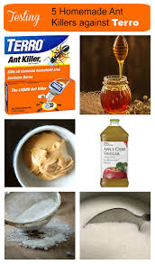borax for ant control.  For I Recently Test Five Ant Killers Find Out Which One Works Best Throughout Borax For Ant Control T