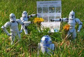star wars weed control
