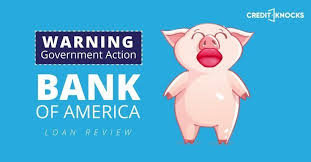 auto loan calculator bankrate com warning government action bank of america auto loan review