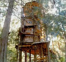 The Treehouse Book Peter Nelson David Larkin 0787721995975 Treehouse Builder Pete Nelson