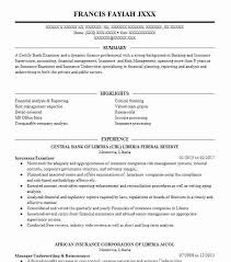 Reinsurance Accountant Sample Resume