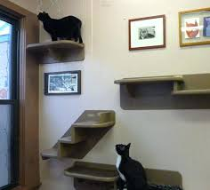 cat wall shelves best furniture images on ikea