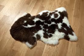 rare breed jacobs sheepskin rug
