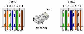 cat5 wiring diagram b ethernet color code cat5 \u2022 wiring diagrams cat 5 wiring diagram wall jack at Cat5 Wiring Diagram