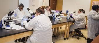 Medical Laboratory Technician - Associate Of Science - Brookline College