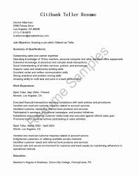 Resume Example Bank Loan Officer Sample Picture Examples