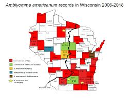 Amblyomma americanum (Lone star tick) – Wisconsin Ticks and Tick ...