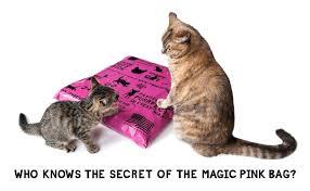 cat puzzle rug diy