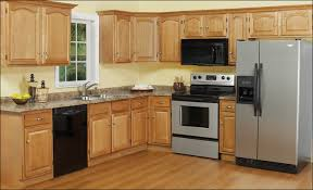 Inexpensive Kitchen Cabinets Are Inexpensive Kitchen Cabinets Safe  Investments Kitchen Ideas Style